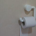 Waarom u een mobiel toilet zou moeten huren tijdens uw renovatie
